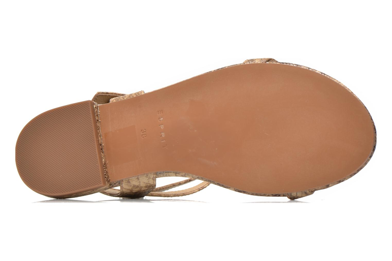 Sandali e scarpe aperte Esprit Aely Bis Sandal Beige immagine dall'alto