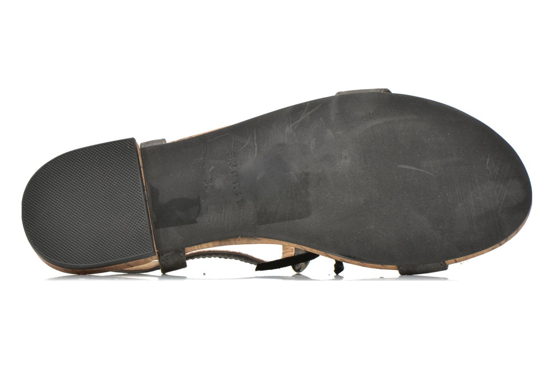 Sandales et nu-pieds Esprit Aely Ter Sandal Noir vue haut