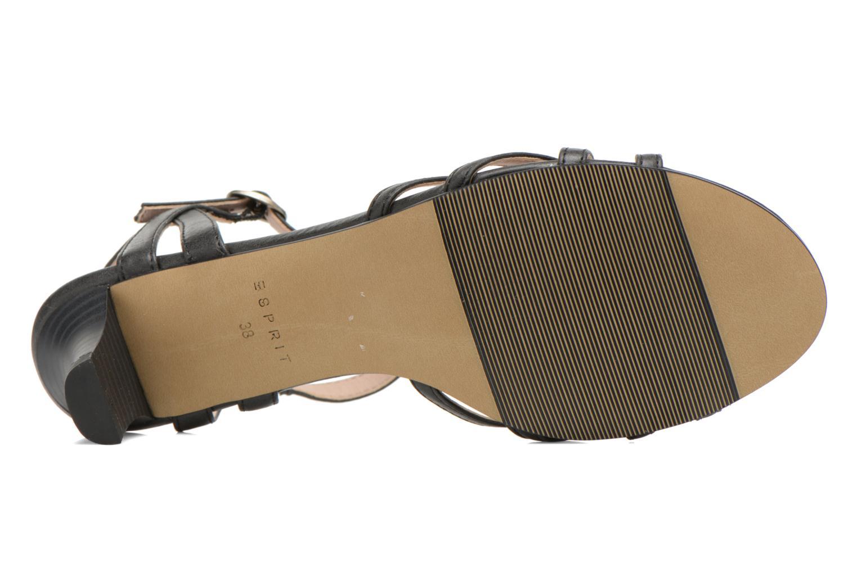 Sandali e scarpe aperte Esprit Birkin Sandal Nero immagine dall'alto