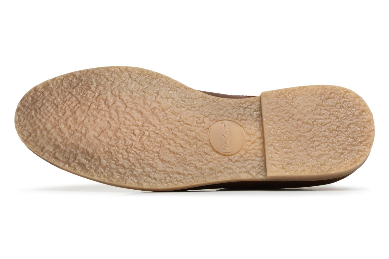 Zapatos con cordones Kickers FLAVESTON Marrón vista de arriba