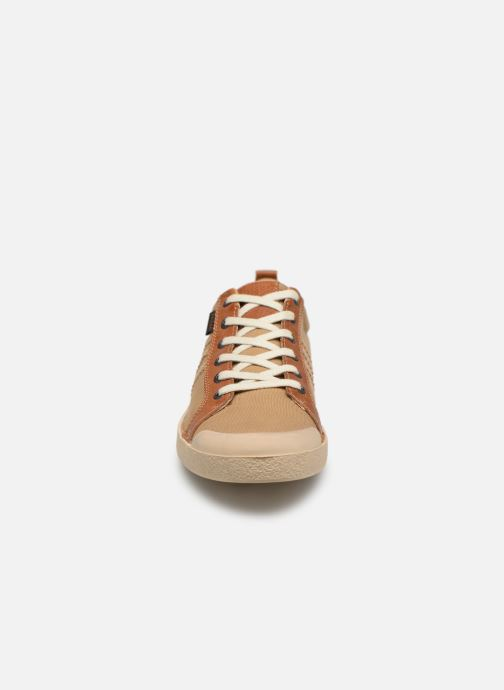 Sneakers Kickers TRIDENT Marrone modello indossato