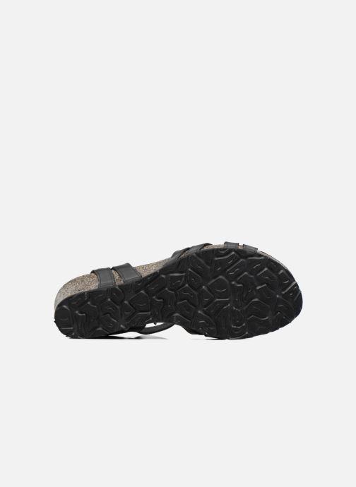 Sandales et nu-pieds Panama Jack Vera Noir vue haut