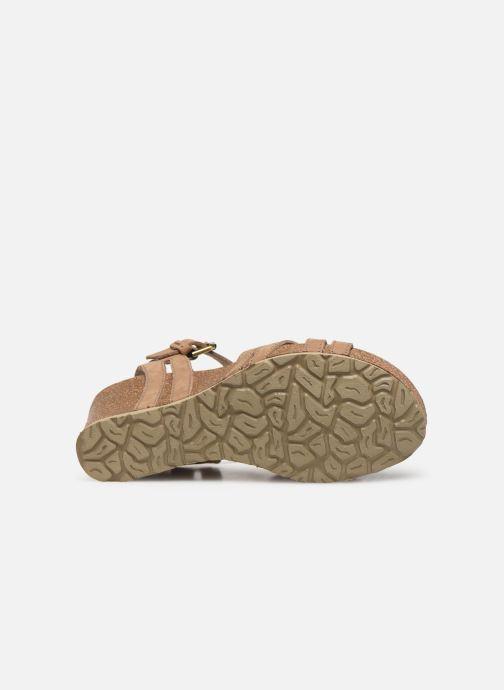 Sandales et nu-pieds Panama Jack Vera Beige vue haut