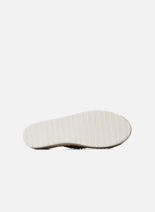 Colorees of California Poshpadrille lacet (MultiColoreeee) - Scarpe di corda corda corda chez   Ben Noto Per Le Sue Belle Qualità  173f65