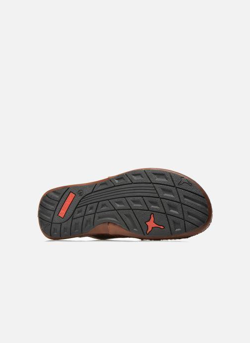 Sandali e scarpe aperte Pikolinos Tarifa 06J-0015 Marrone immagine dall'alto