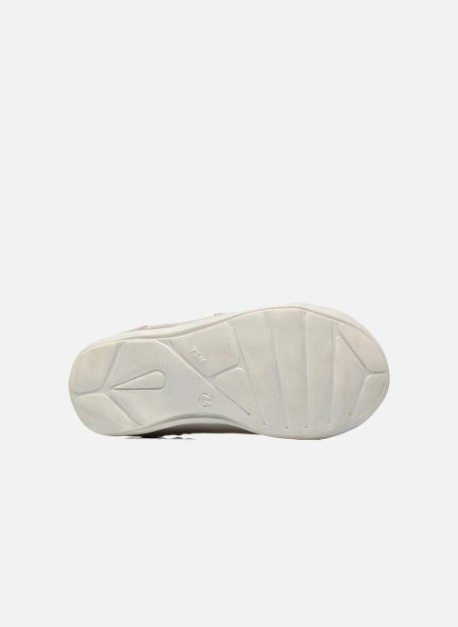 Zapatos con velcro GBB Melissa Gris vista de arriba