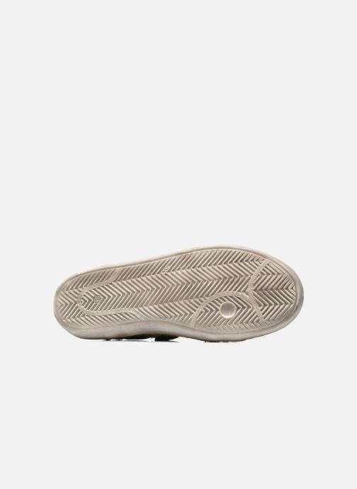 Sneakers Kickers Lylian Groen boven