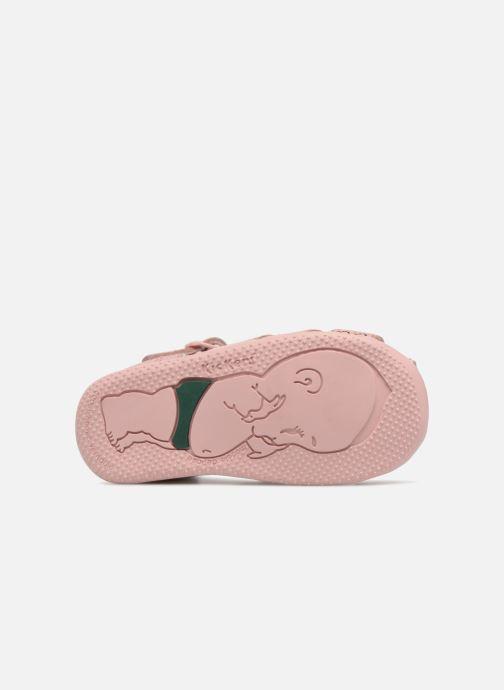 Sandali e scarpe aperte Kickers Bigfly Rosa immagine dall'alto