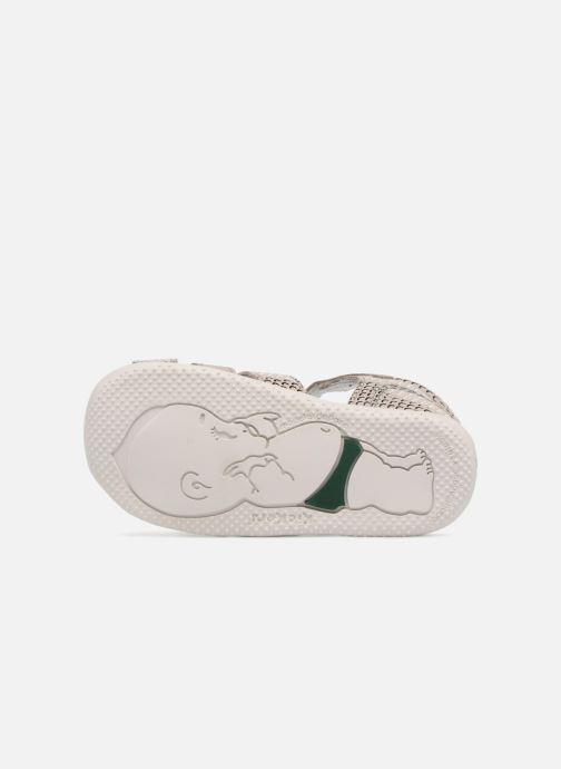 Sandales et nu-pieds Kickers Bigfly Gris vue haut