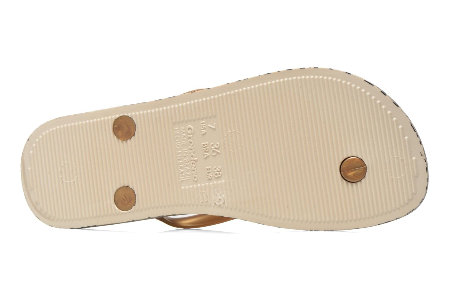 Flip flops Ipanema Anatomica Soft Bronze and Gold view from above