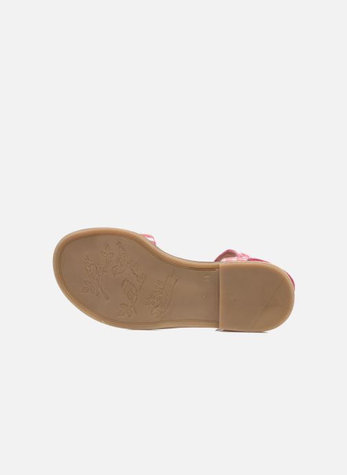Sandali e scarpe aperte Pom d Api Nikky Sandal Eyeliner Rosa immagine dall'alto