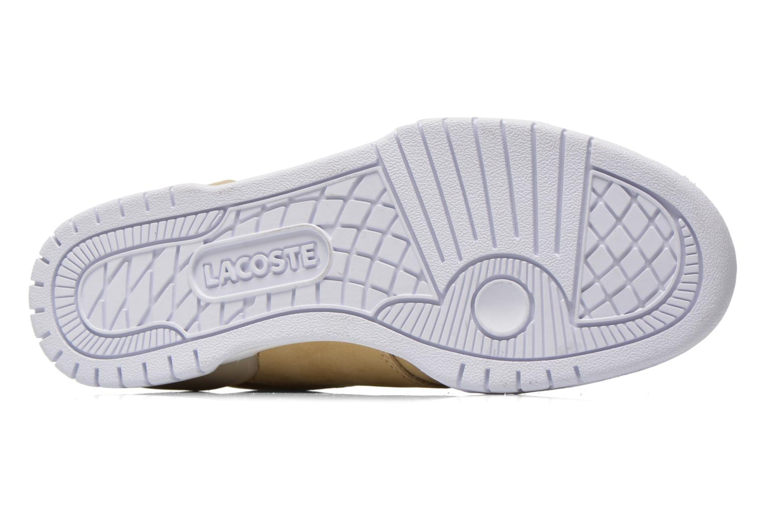Trainers Lacoste Indiana 116 G2 Beige view from above