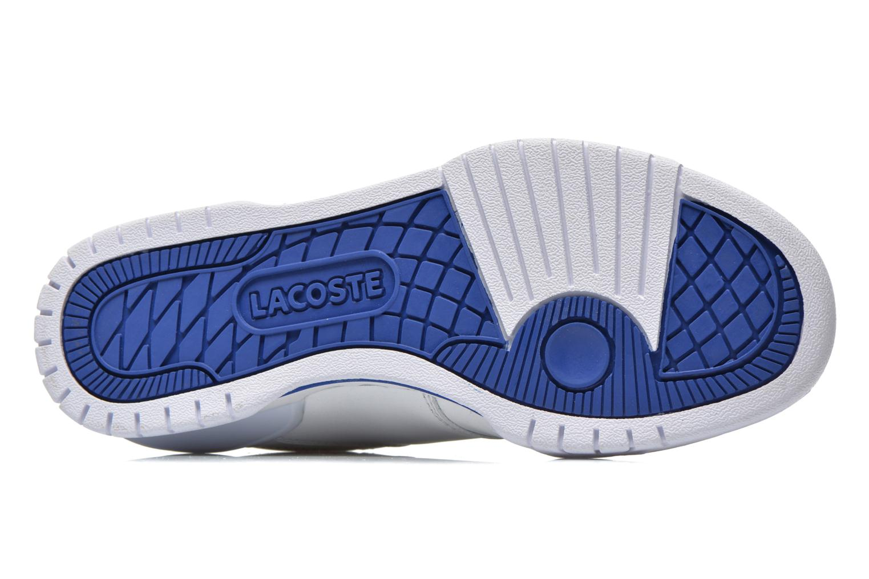 Baskets Lacoste Indiana 116 C Blanc vue haut