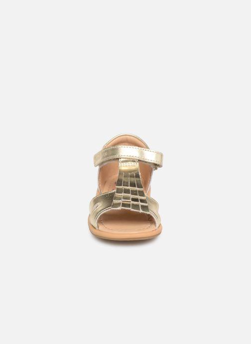 Sandali e scarpe aperte Shoo Pom Tity Fringe Oro e bronzo modello indossato