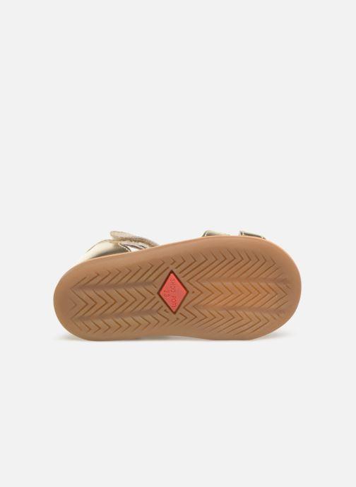 Sandali e scarpe aperte Shoo Pom Tity Fringe Oro e bronzo immagine dall'alto