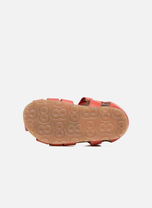 Sandales et nu-pieds Naturino Gabriele 1405 Rouge vue haut