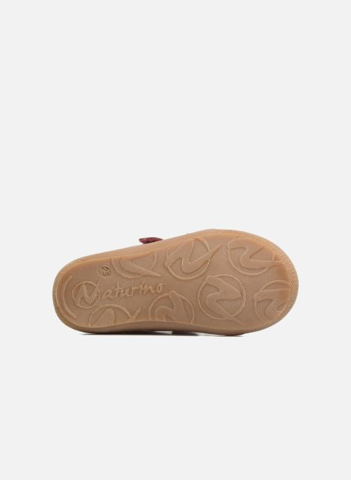 Sneakers Naturino Cocoon VL Roze boven