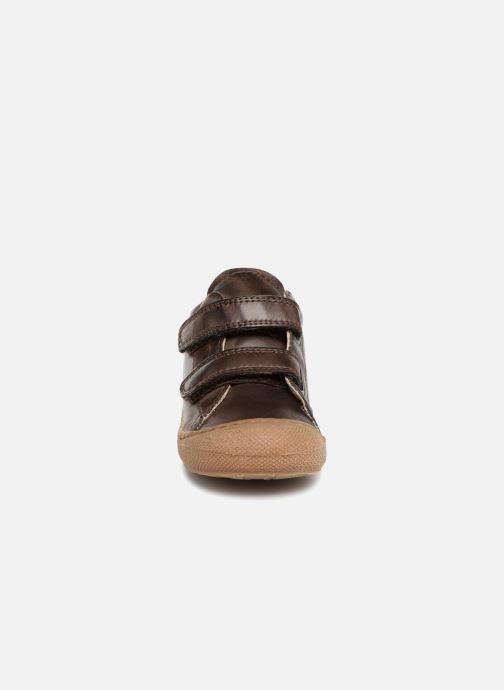 Sneaker Naturino Cocoon VL braun schuhe getragen