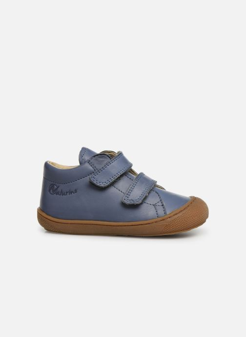 Sneaker Naturino Cocoon VL blau ansicht von hinten