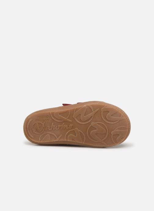 Sneakers Naturino Cocoon VL Bordeaux boven