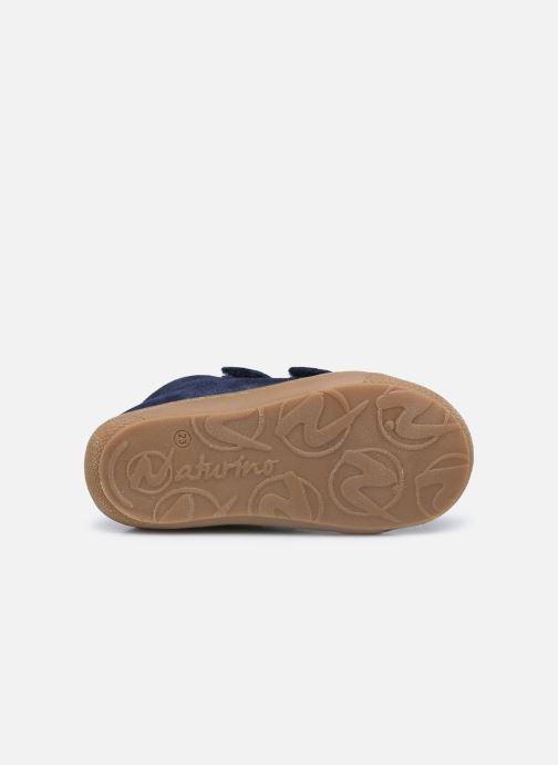Baskets Naturino Cocoon VL Bleu vue haut