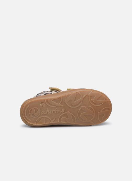 Baskets Naturino Cocoon VL Or et bronze vue haut