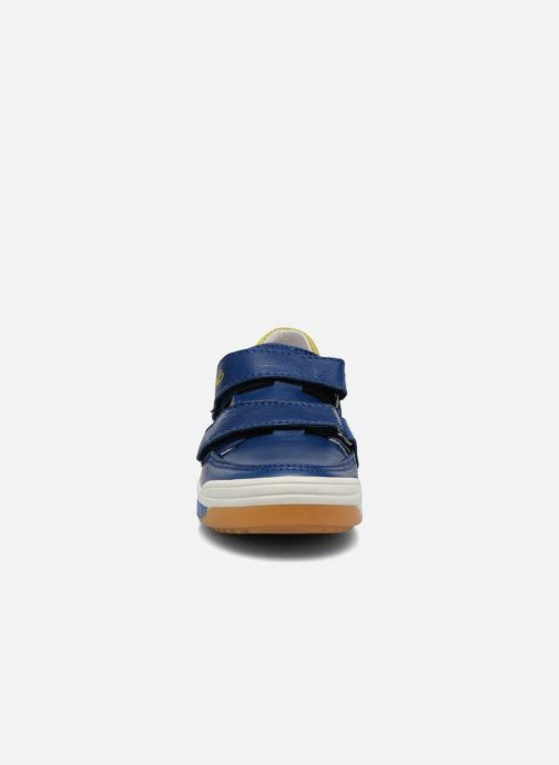 Trainers Acebo's Tempo Blue model view