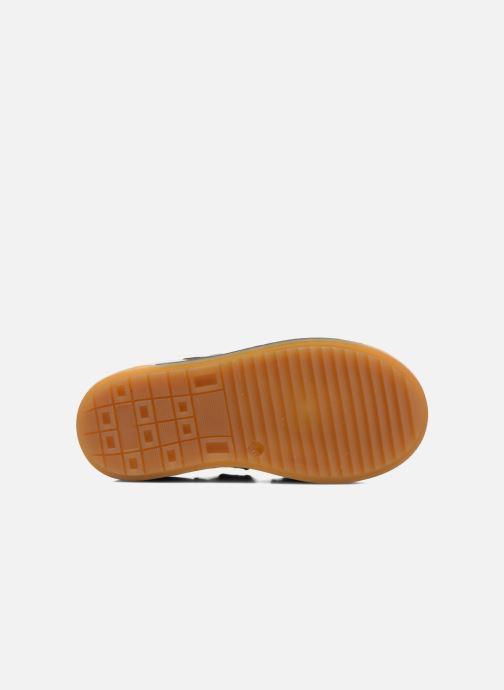Baskets Acebo's Tempo Gris vue haut