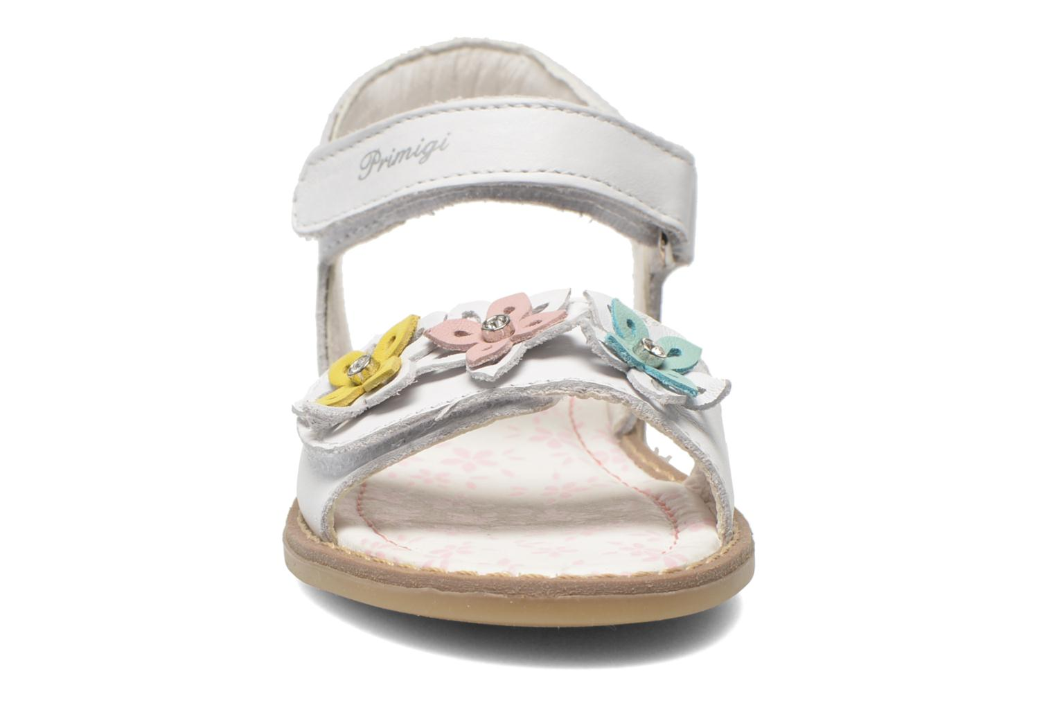 Sandals Primigi Ginessa White model view