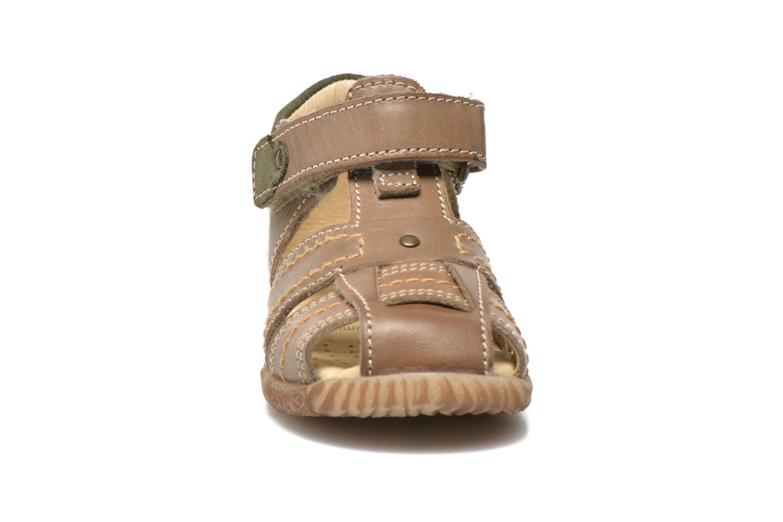 Sandaler Primigi Lars Grå bild av skorna på