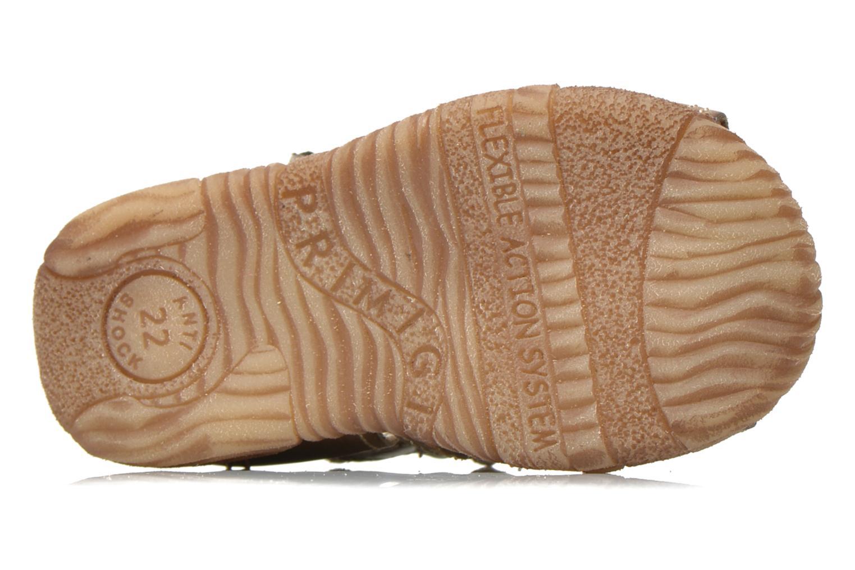 Sandaler Primigi Lars Grå bild från ovan