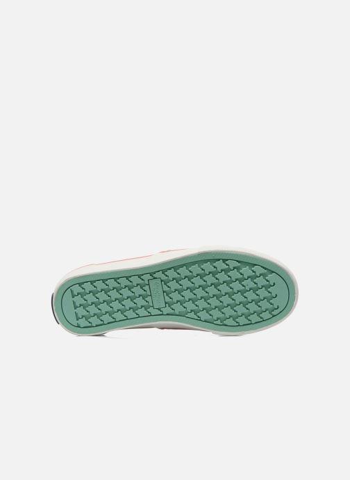 Sneakers Pepe jeans Alford Jungle Multicolore immagine dall'alto