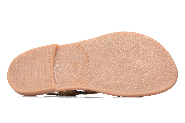 Sandali e scarpe aperte Les Tropéziennes par M Belarbi Becot Marrone immagine dall'alto
