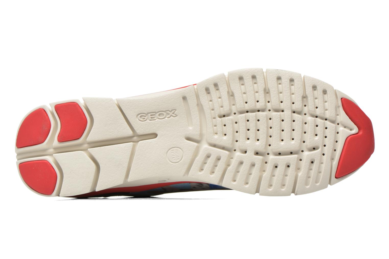 Sneakers Geox D SUKIE E D62F2E Azzurro immagine dall'alto