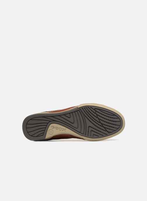 Sneaker Geox U KRISTOF A U620EA braun ansicht von oben