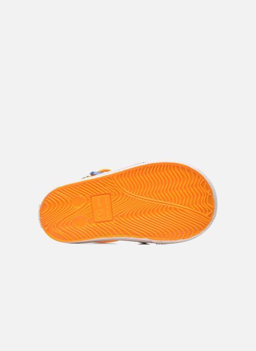 Sandalias Colors of California Jelly sandals CROCO Naranja vista de arriba