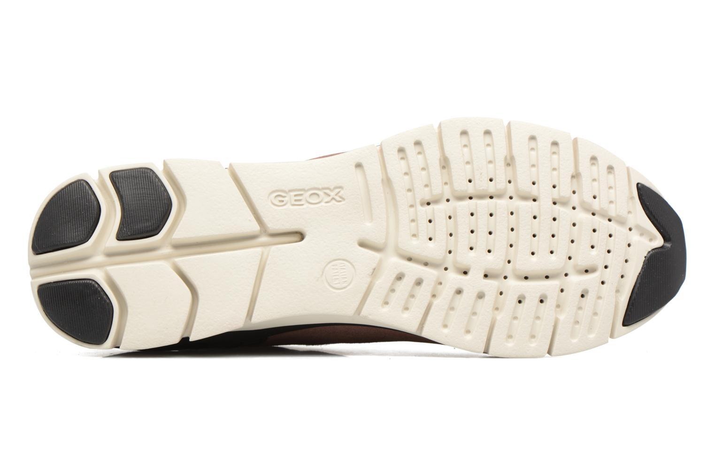 Sneakers Geox D SUKIE B D62F2B Roze boven