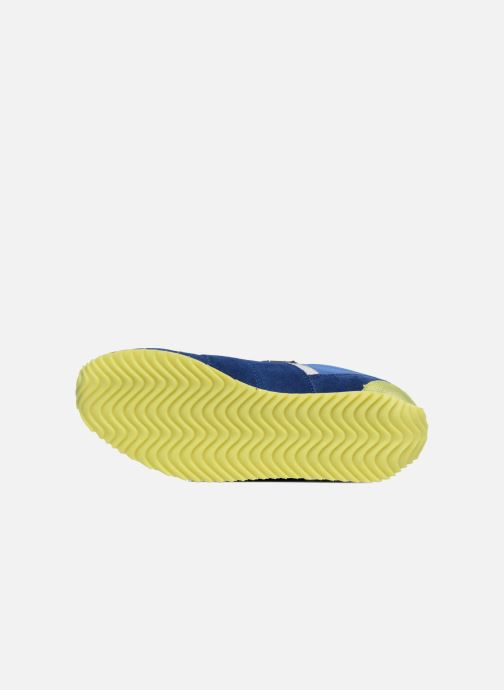Sneakers P-L-D-M By Palladium Fabeo Nyl Blauw boven