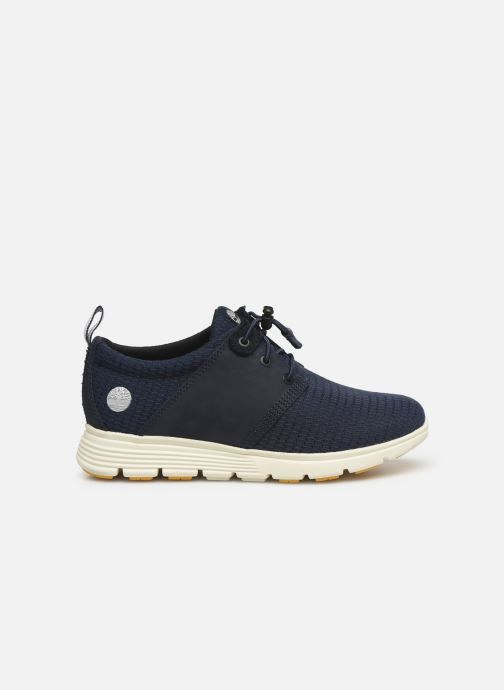Baskets Timberland Killington Oxford Bleu vue derrière