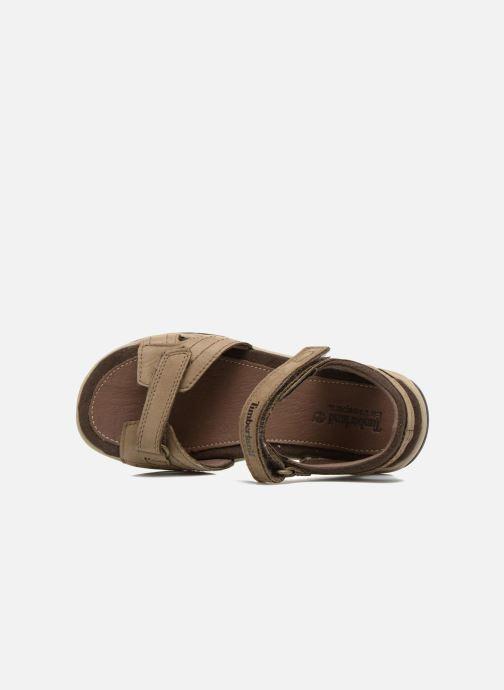 Sandali e scarpe aperte Timberland Oak Bluffs Leather 2Strap Marrone immagine sinistra