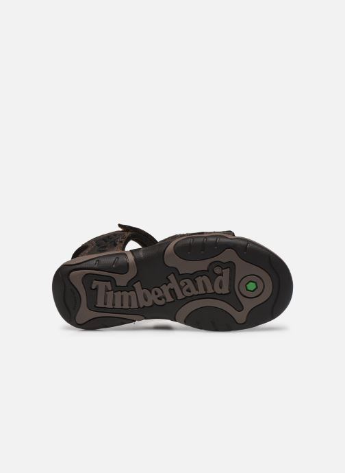 Sandalias Timberland Oak Bluffs Leather 2Strap Marrón vista de arriba