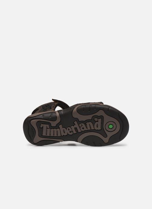 Sandales et nu-pieds Timberland Oak Bluffs Leather 2Strap Marron vue haut
