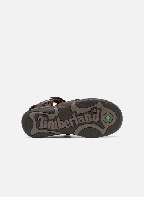 Sandales et nu-pieds Timberland Oak Bluffs Leather Fisher Marron vue haut