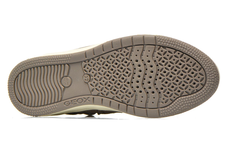 Sneakers Geox J Creamy B J54L5B Grigio immagine dall'alto