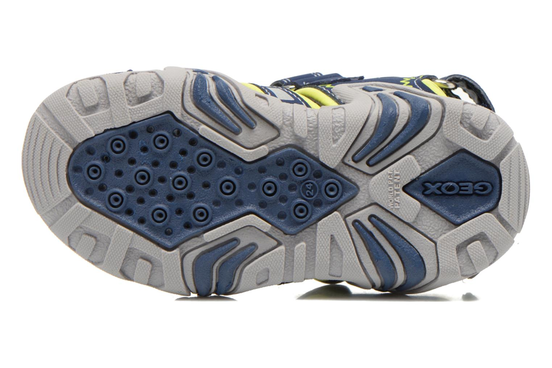 Sandali e scarpe aperte Geox B Sandal Kraze B B6224B Azzurro immagine dall'alto