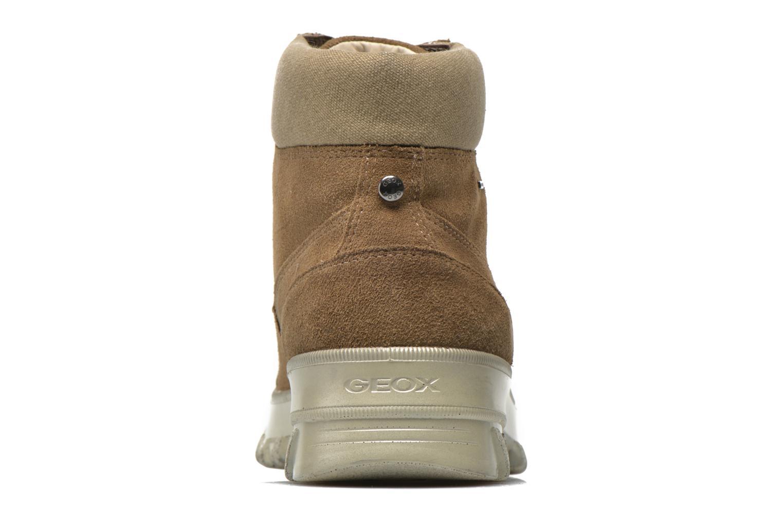 Boots en enkellaarsjes Geox D Yeti B ABX D44U1B Groen rechts