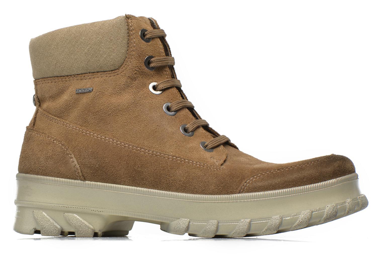 Boots en enkellaarsjes Geox D Yeti B ABX D44U1B Groen achterkant