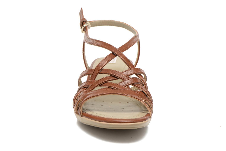 Sandales et nu-pieds Geox D New Coral D52S3A Marron vue portées chaussures