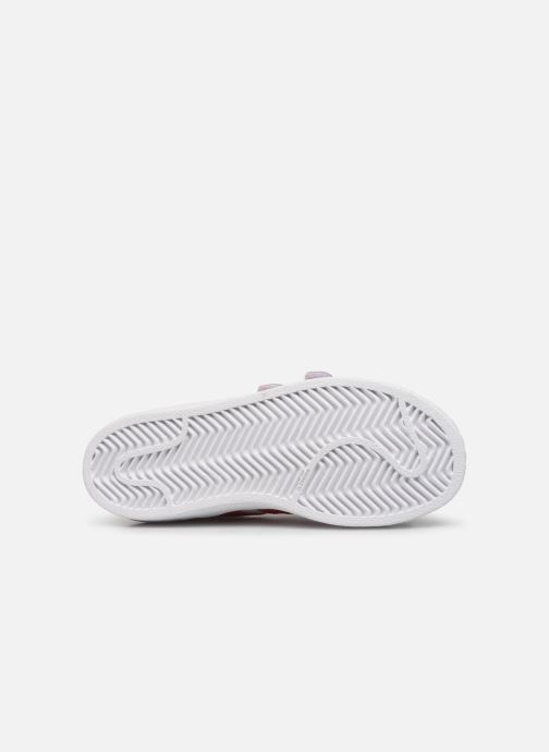Baskets adidas originals superstar CF C Blanc vue haut