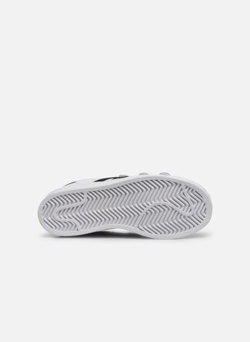 Trainers adidas originals superstar CF C White view from above